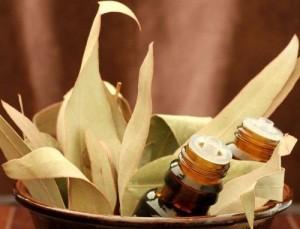 евкаліптова олія при вагітності