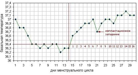 Базальна температура при вагітності до затримки: графік