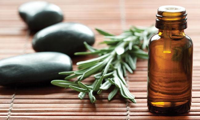 Олія чайного дерева: властивості, застосування