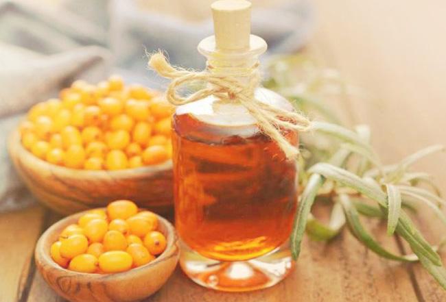 Лікувальні властивості обліпихової олії обгрунтували з медичної точки зору в 70-х роках минулого століття