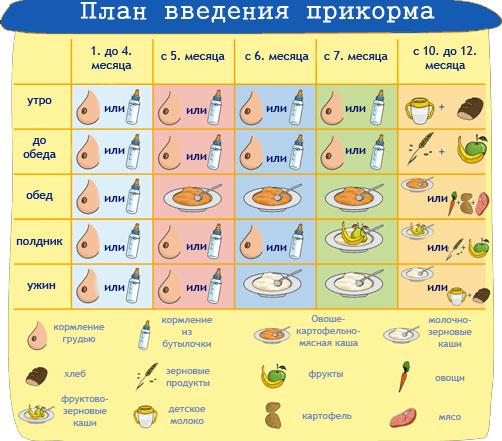 скачать таблица введения прикорма