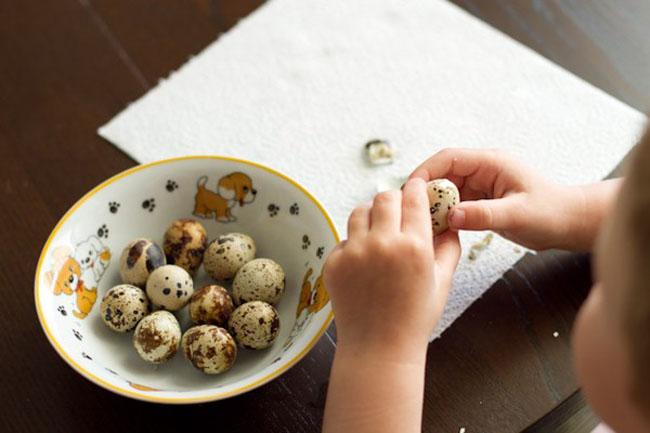 Перепелині яйця для дітей: корисні властивості