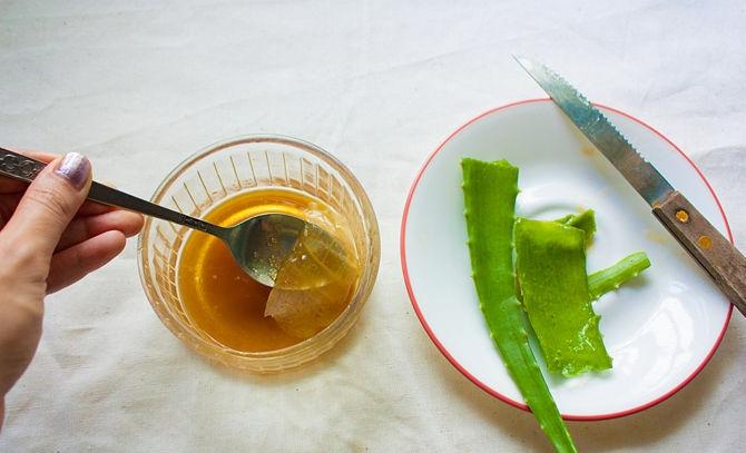 Как сделать мазь из алоэ и меда