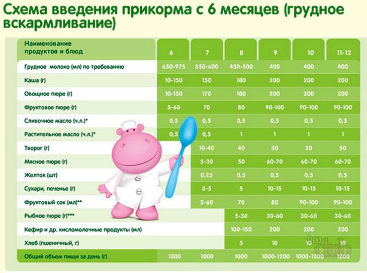 Схема введения прикорма при искусственном вскармливании овощи