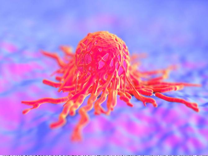 Ракові типи клітин - унікальні дослідження