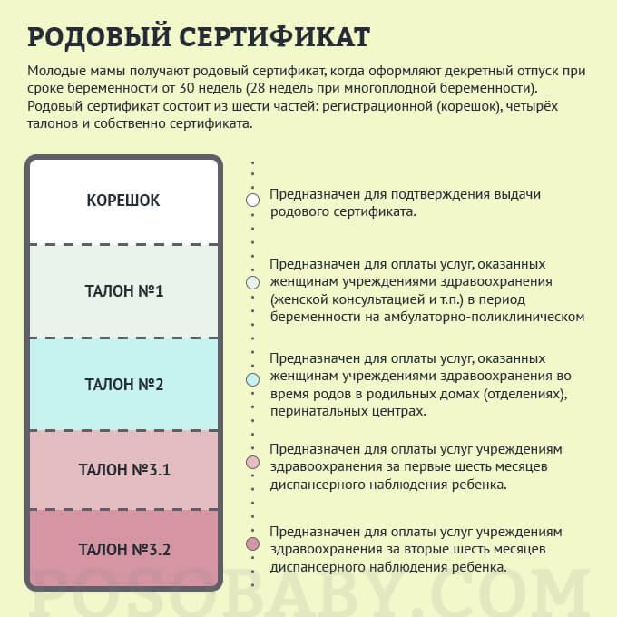 dokumenty-v-roddom-rodovoy sertifikat