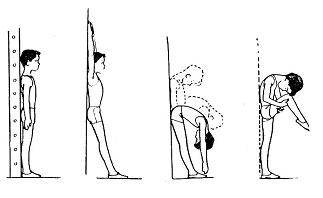 Метою коригуючої гімнастики є формування правильної постави