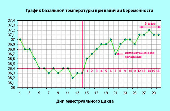 grafik-bazalnoy-temperatury-pri-beremennosti