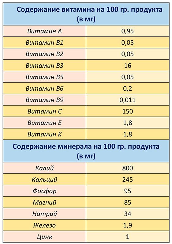 Таблиця корисних вітамінів і мінералів петрушки