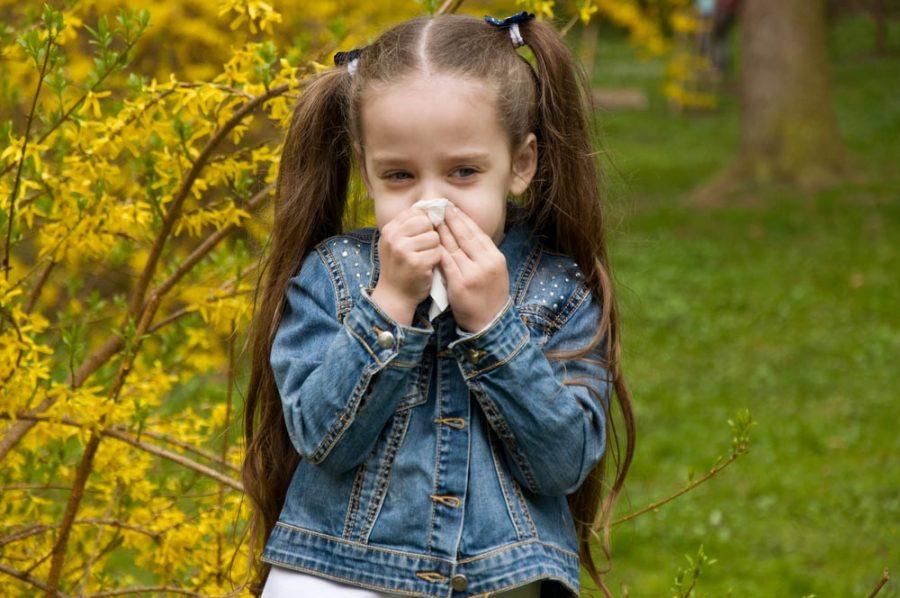 Зелені соплі у дитини: заразні чи ні? Коли йти в дитячий сад?